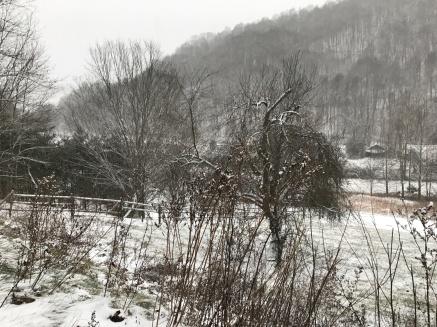 Winter scene in Southern Appalachia