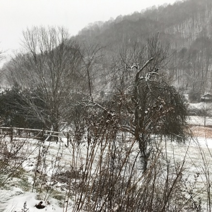 Winter scene in Southern Appalachia
